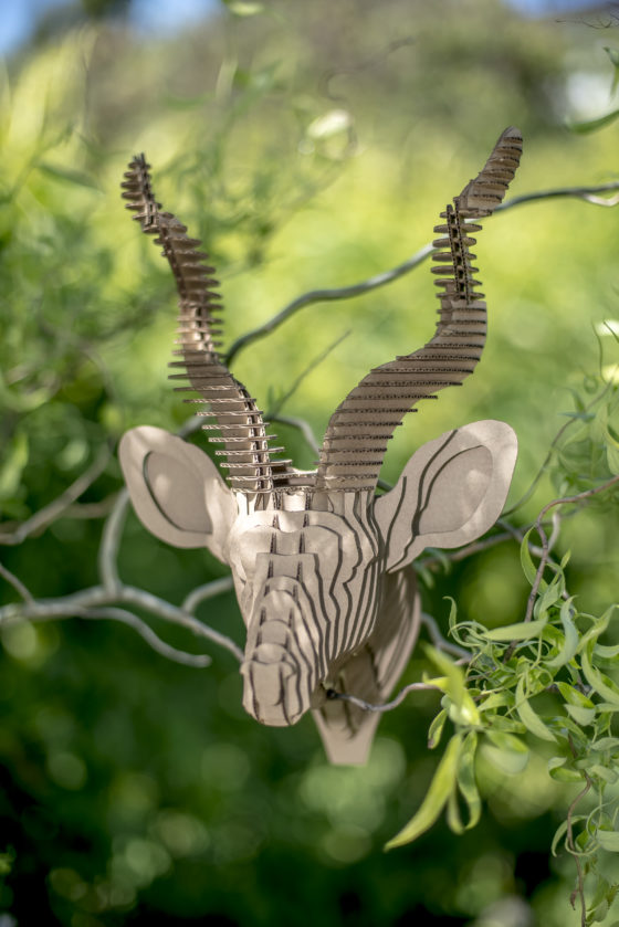 Victor - cardboard antelope kudu trophy. Animal head for self assembly.
