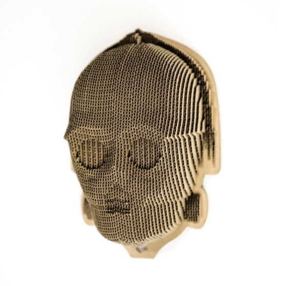 C3P0 - cardboard head for self assembly.