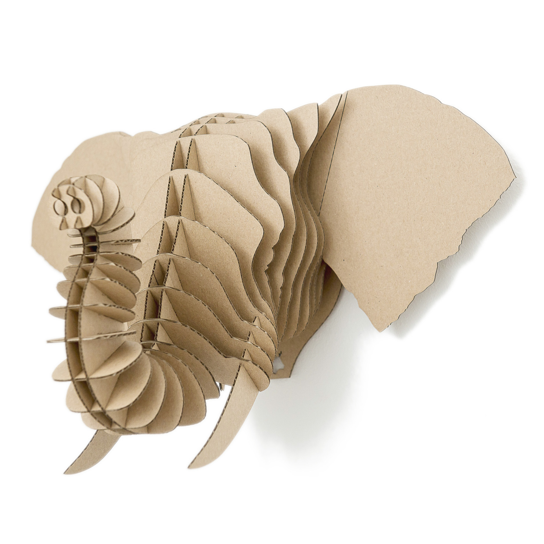 Frank - cardboard elephant trophy. Animal head for self assembly.