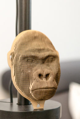 Gorilla - cardboard head for self assembly.