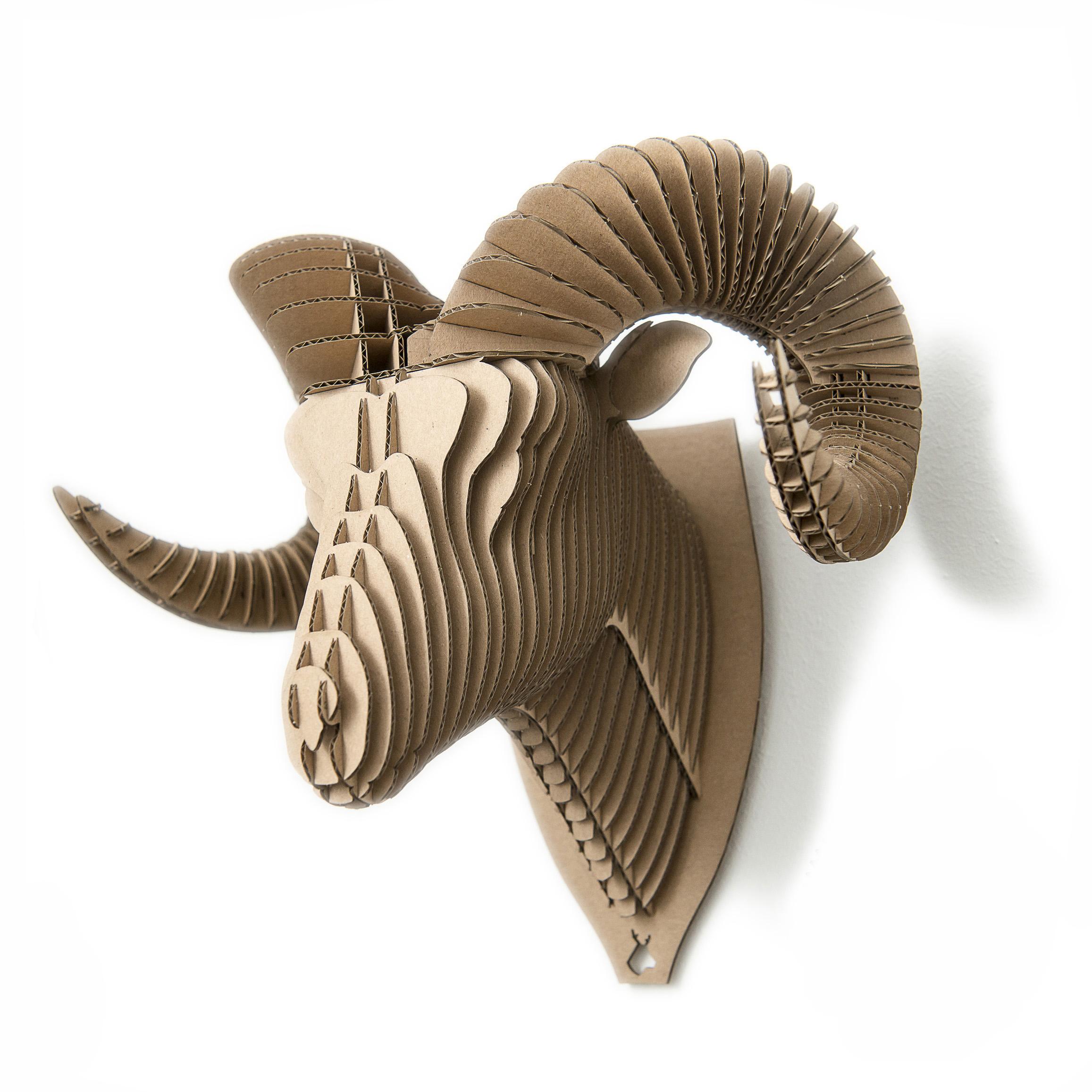 Ryan - cardboard ram trophy. Animal head for self assembly.