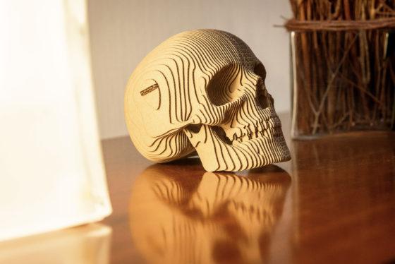 Skull_09